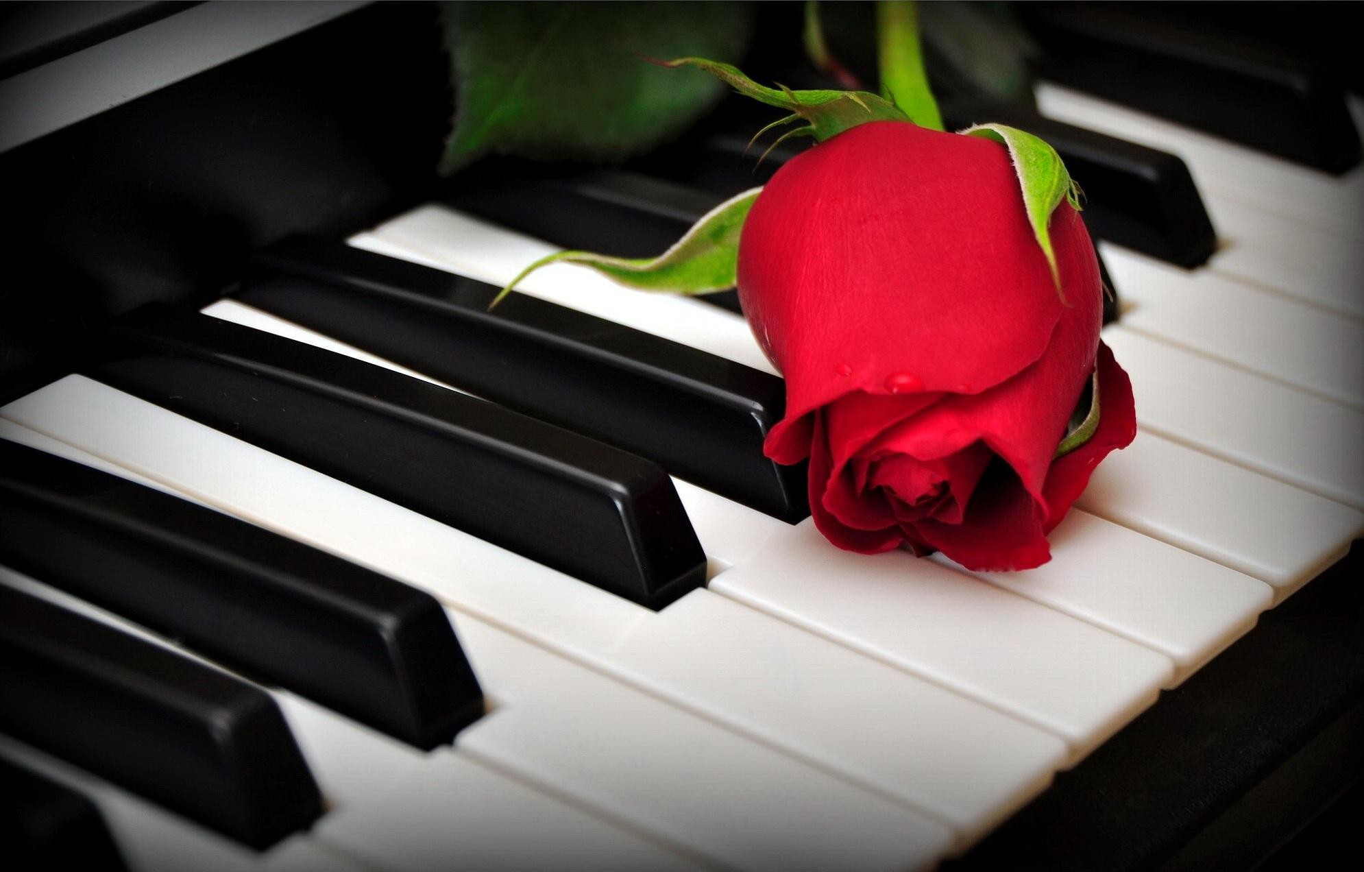 romantic-piano-86547